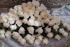 Regalo de 75 rosas por el 75º aniversario de María Santísima de los Dolores